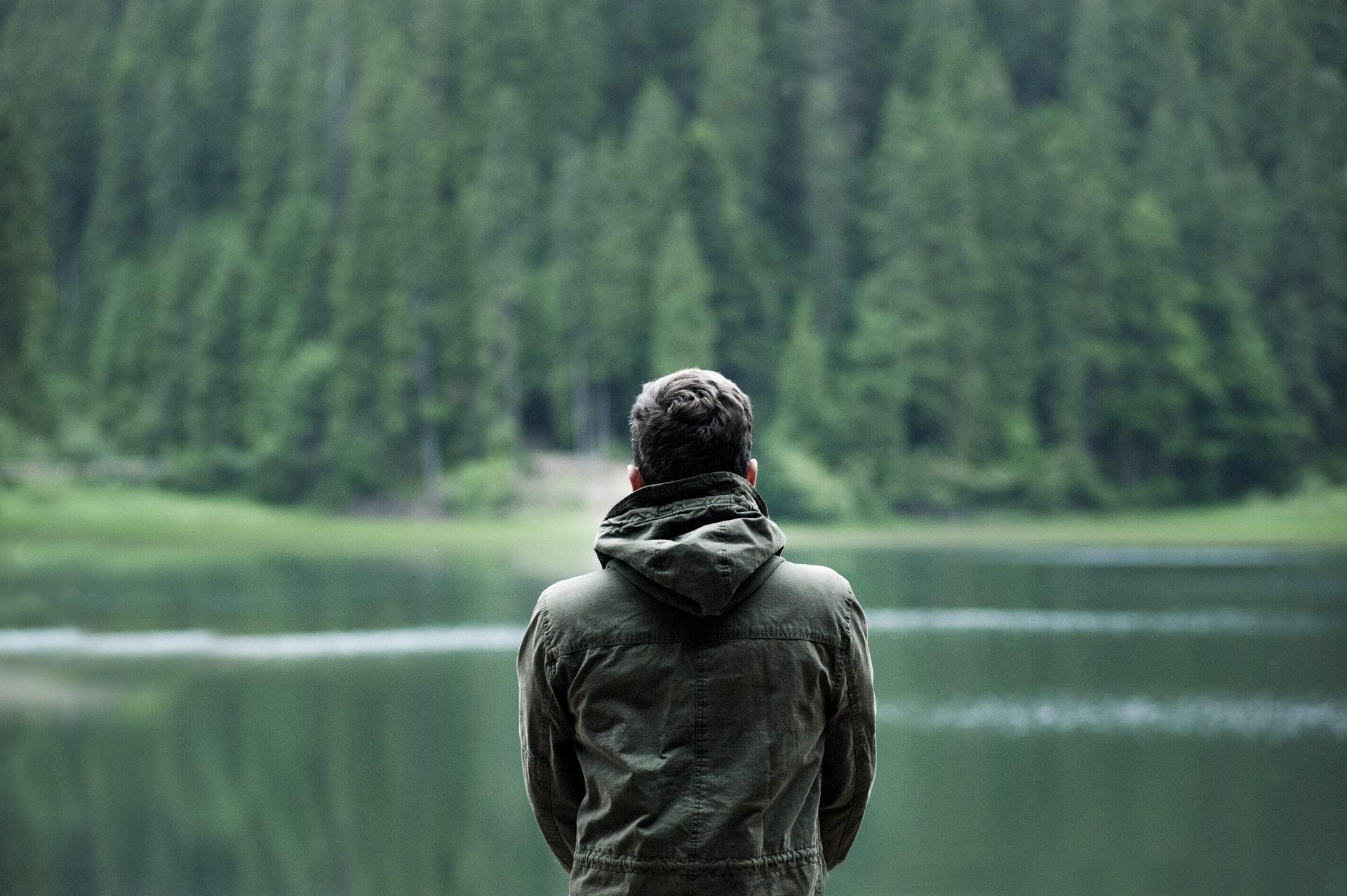 Lövskogen minskar på stressen Image